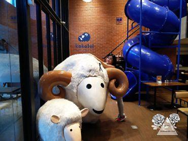 kokotel-sheep